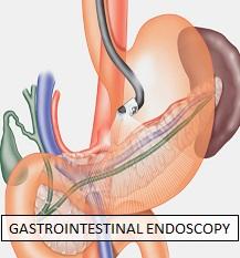 Gastrointestinal Endoscopy_Dr Nachiket Dubale_Gastroenterologist in Pune